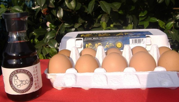 画像1: 鳳凰卵20個とたまごかけ醤油1本 (1)