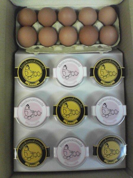 画像1: プランB【生プリン5個と甘さひかえめプリン4個と鳳凰卵10個】 (1)