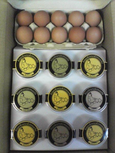 画像1: プランB【生プリン5個とサトウキビプリン4個と鳳凰卵10個】 (1)