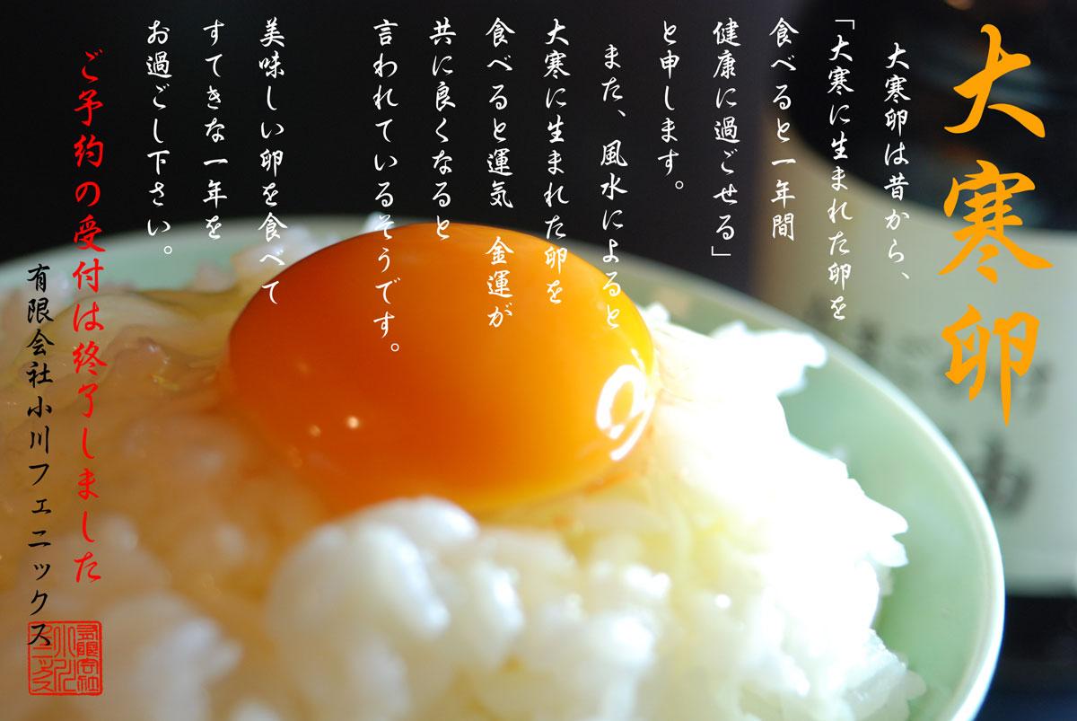 た 料理 使っ 卵